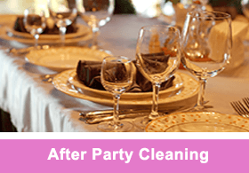 After Party Cleaning