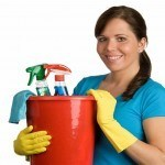 Home Cleaning Cleaners